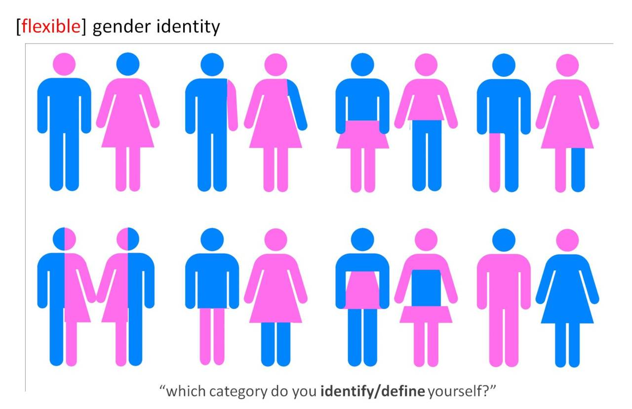 pages gender identity implications changing social roles