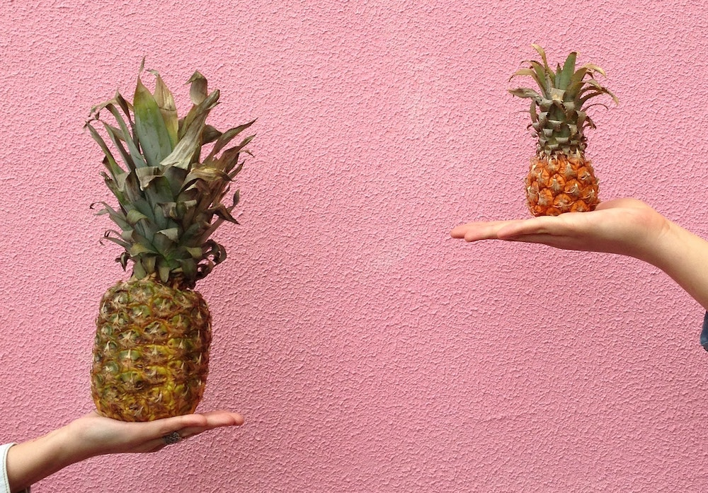 compare pineapples | blog content topics